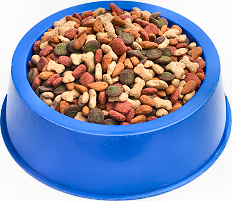 pet food, a very tempting lure for rodents
