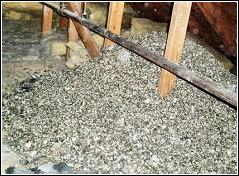 pigeon droppings piled high in an attic