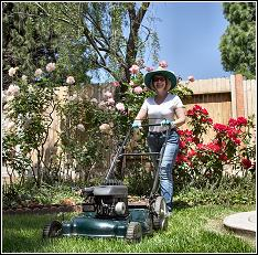 mowing as a preventative step to help get rid of rats