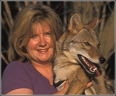 wildlife rehabber annette king with coyote rescue