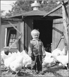 a young Ned Bruha with the family chickens