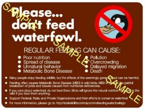 do not feed the waterfowl