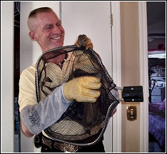 ned bruha removing a squirrel from a home