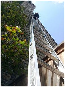 climing ladder to reach attic utilizing humane wildife removal methods
